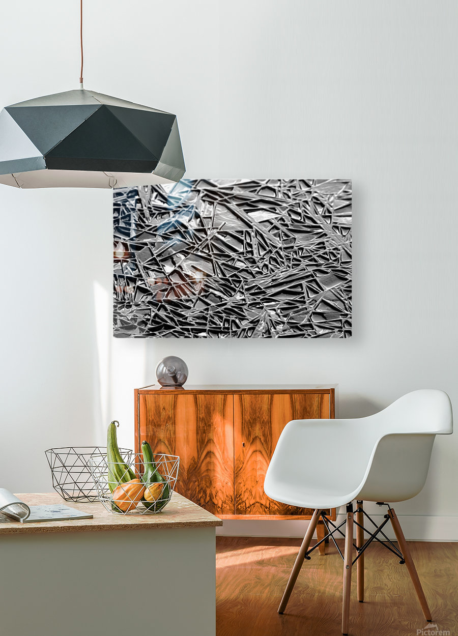Natural Geometry Black And White  HD Metal print with Floating Frame on Back