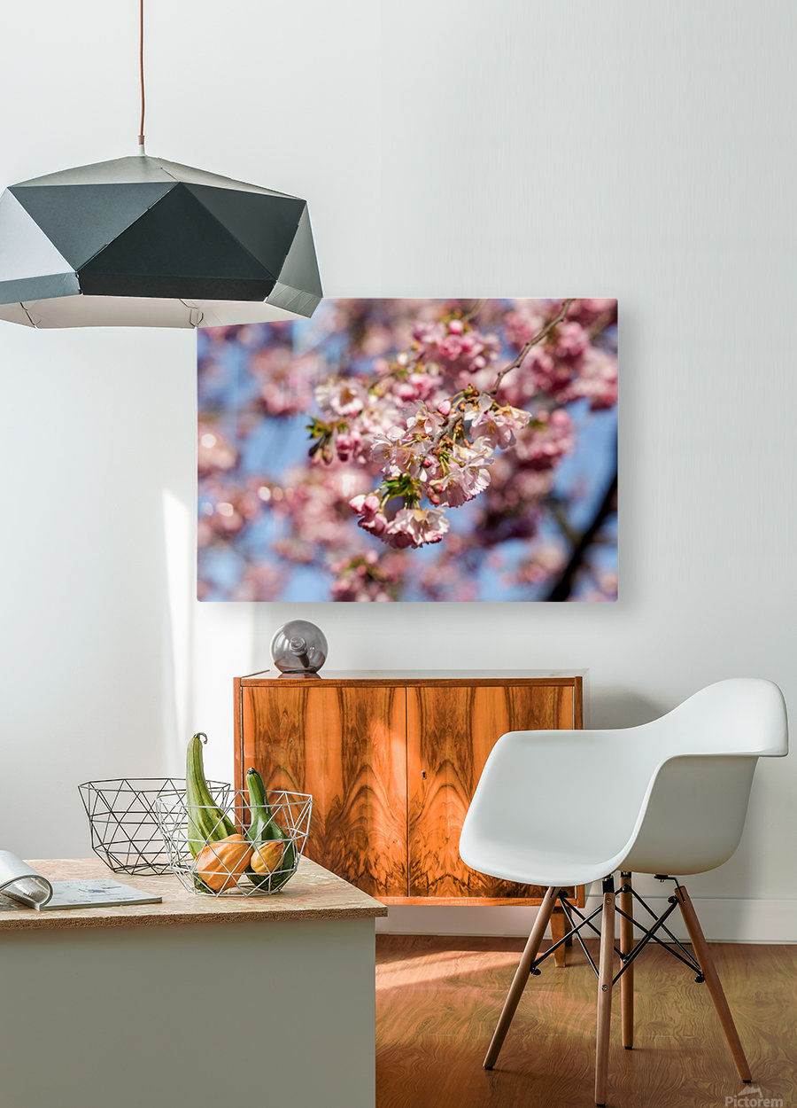 Cherry blossom Red  HD Metal print with Floating Frame on Back