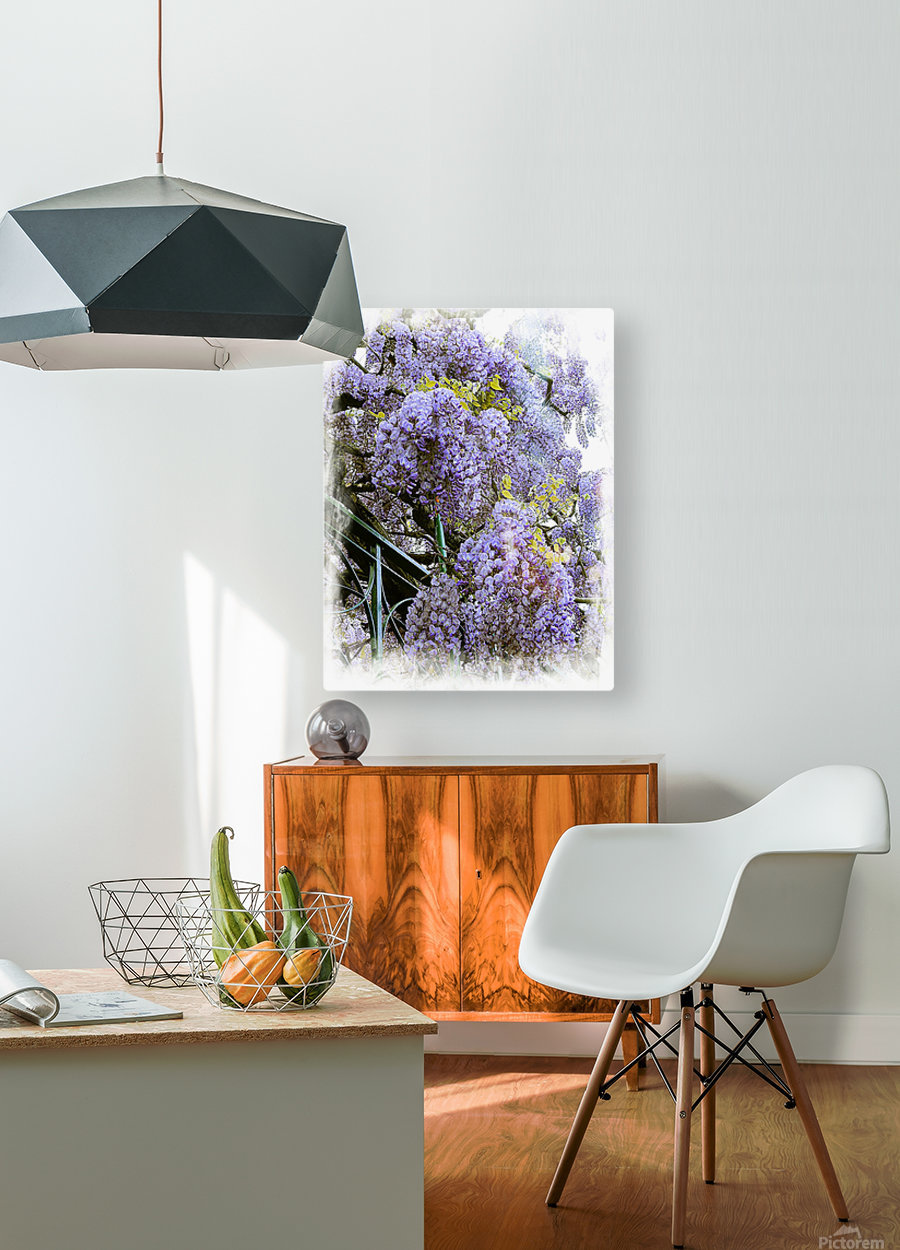 Wisteria Clouds  HD Metal print with Floating Frame on Back