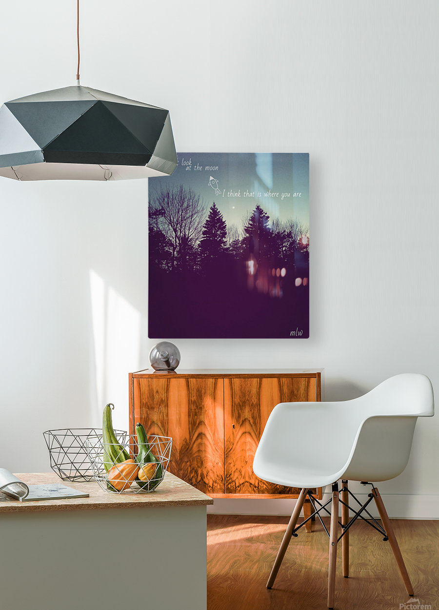 Astronaut  HD Metal print with Floating Frame on Back