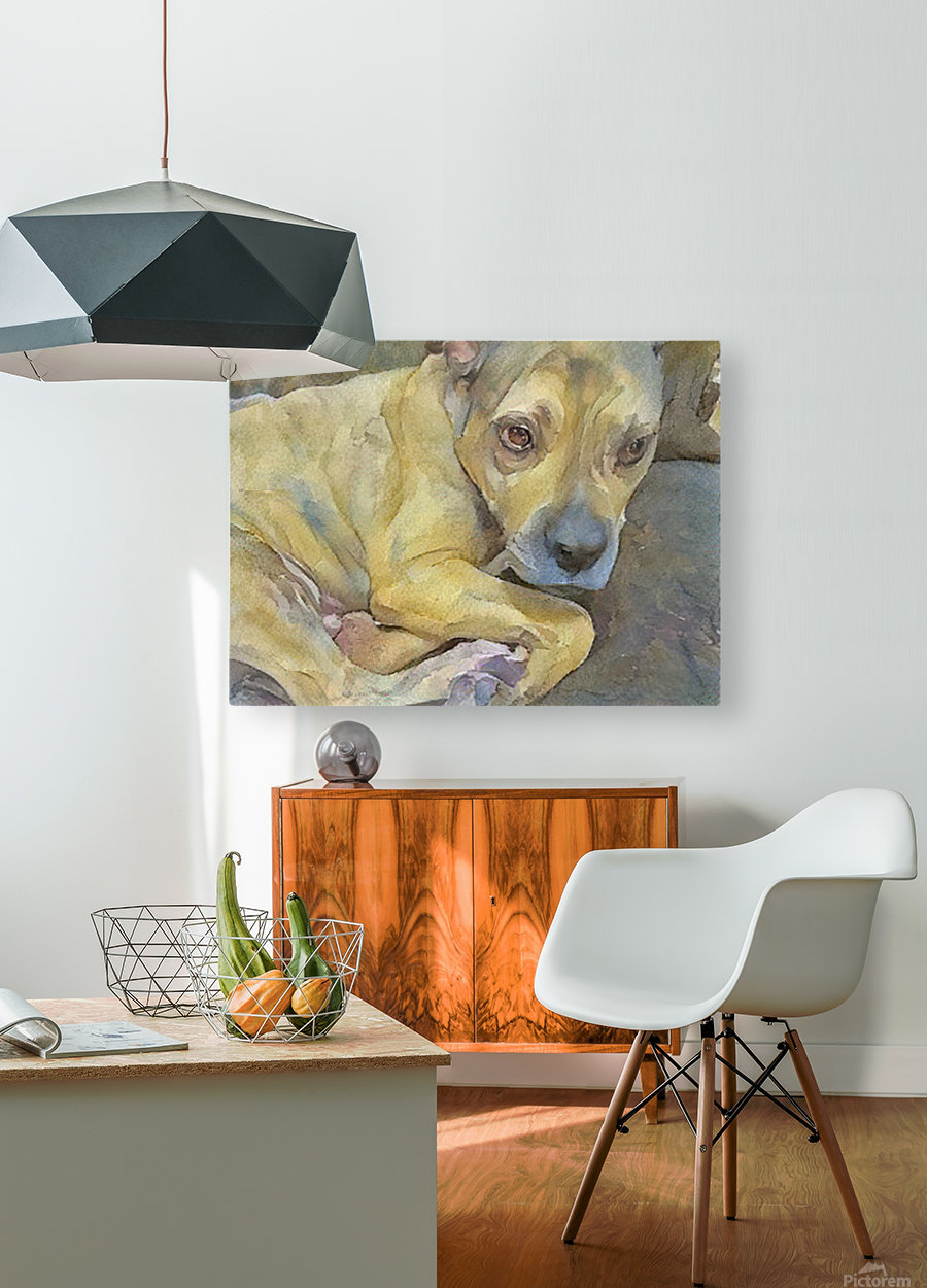 Watercolor dog painting  HD Metal print with Floating Frame on Back