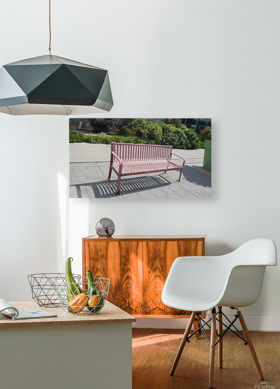 Bench (50)  HD Metal print with Floating Frame on Back