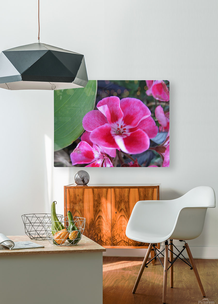 Flower (2)  HD Metal print with Floating Frame on Back