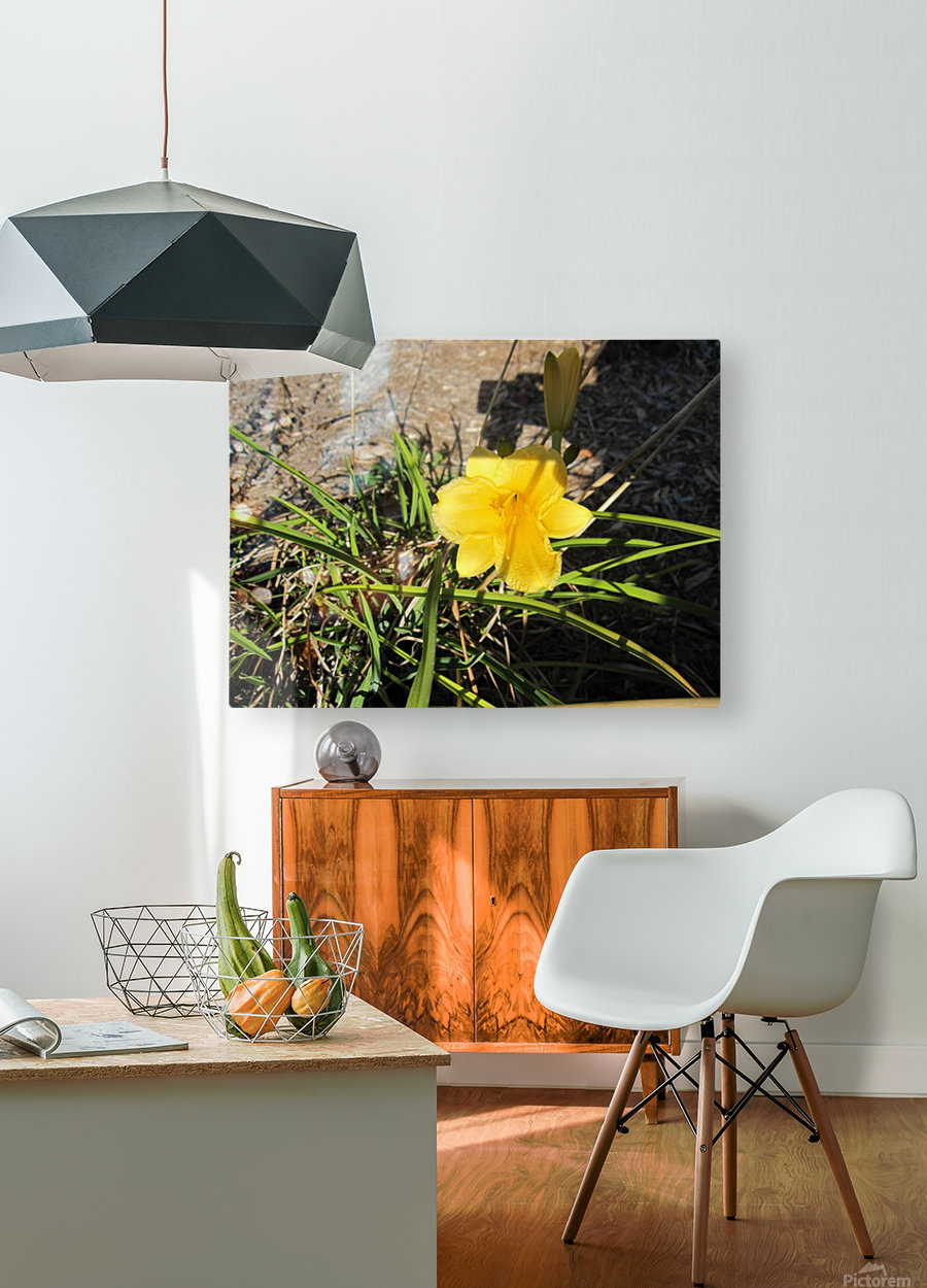 Flower (49)  HD Metal print with Floating Frame on Back