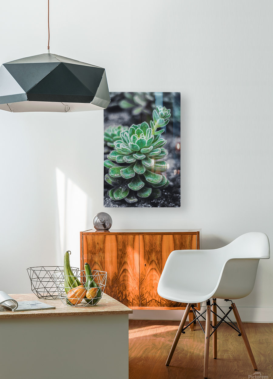 Sweetyplant  HD Metal print with Floating Frame on Back