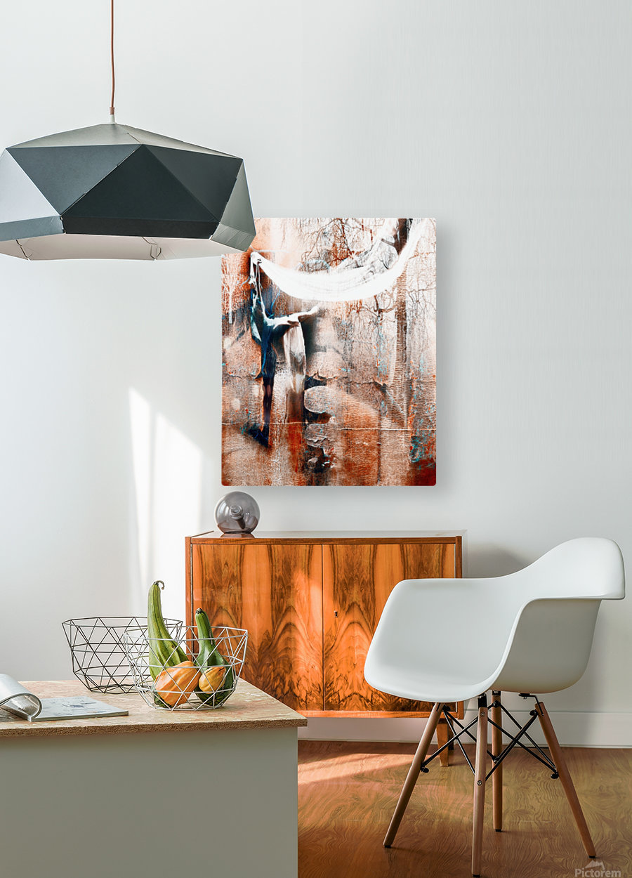 Dancer in the forest  HD Metal print with Floating Frame on Back