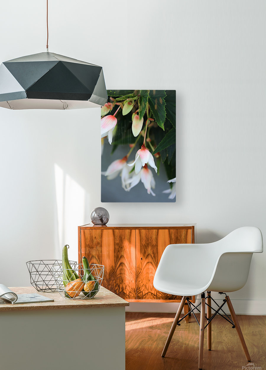 Soft Floral with Gray Wall 2 062618  HD Metal print with Floating Frame on Back