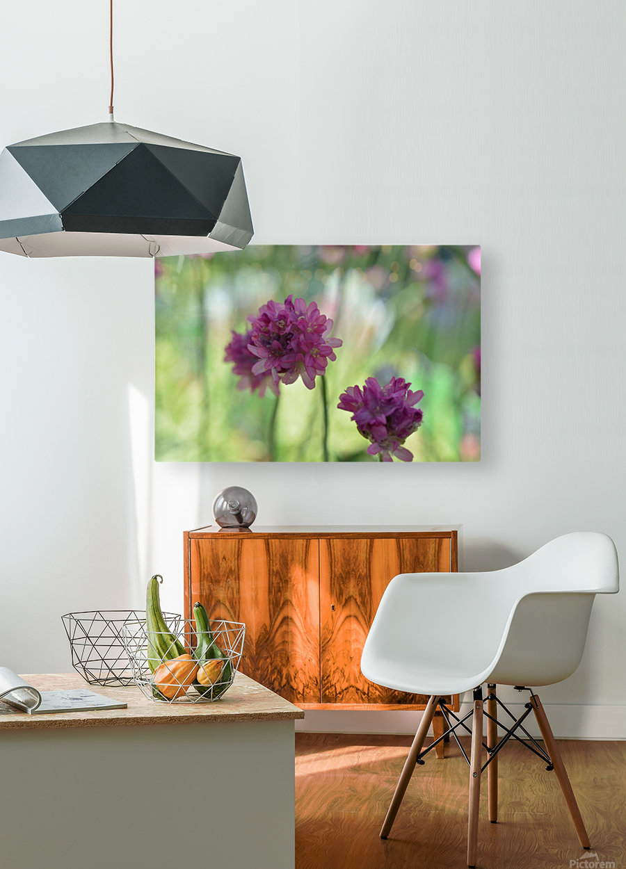 Purple Flowers Photograph  HD Metal print with Floating Frame on Back