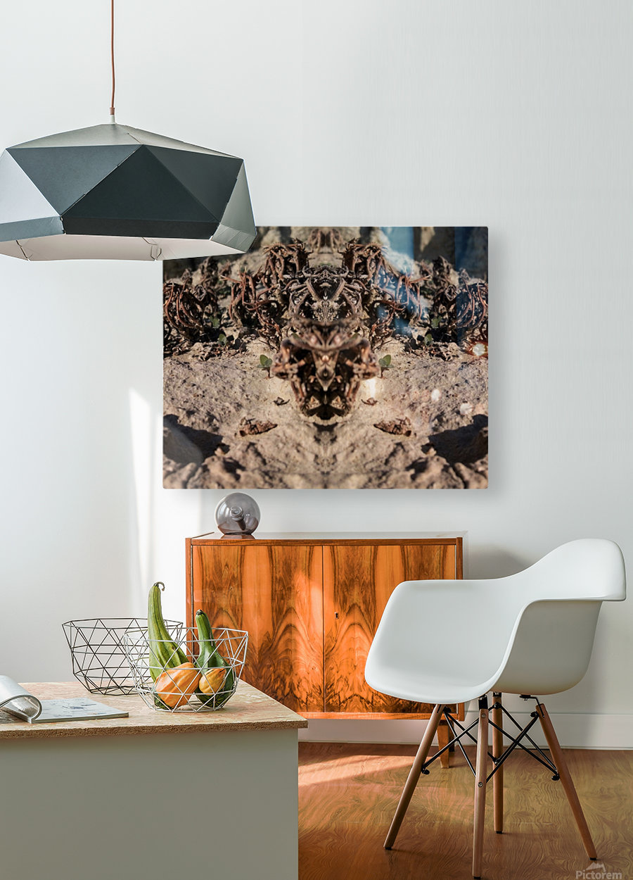 Ox  HD Metal print with Floating Frame on Back