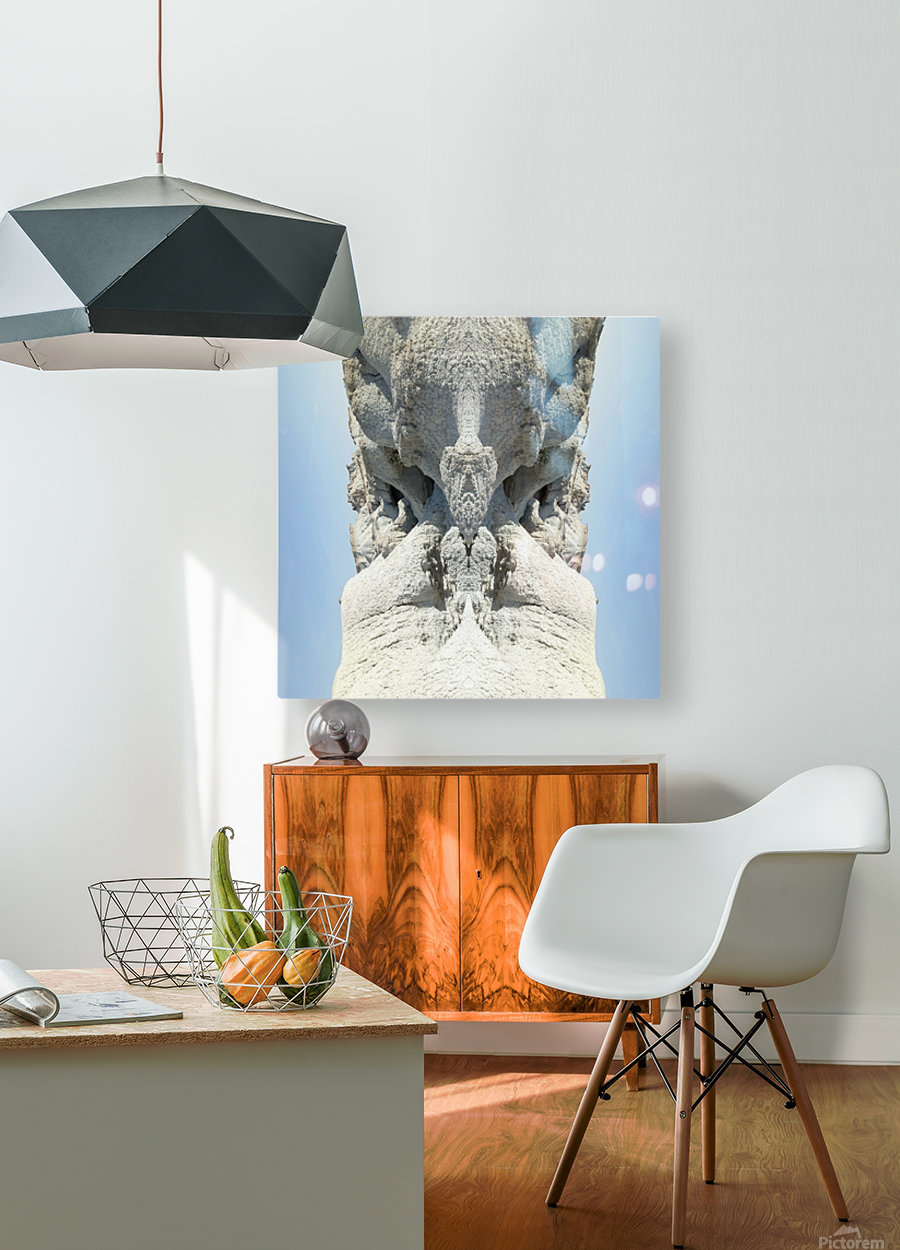 The White Monk  HD Metal print with Floating Frame on Back