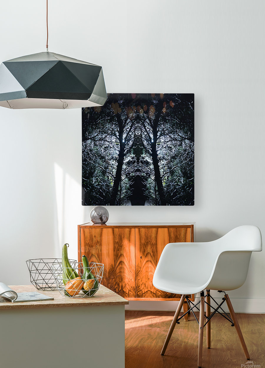 Lord of Shadows  HD Metal print with Floating Frame on Back