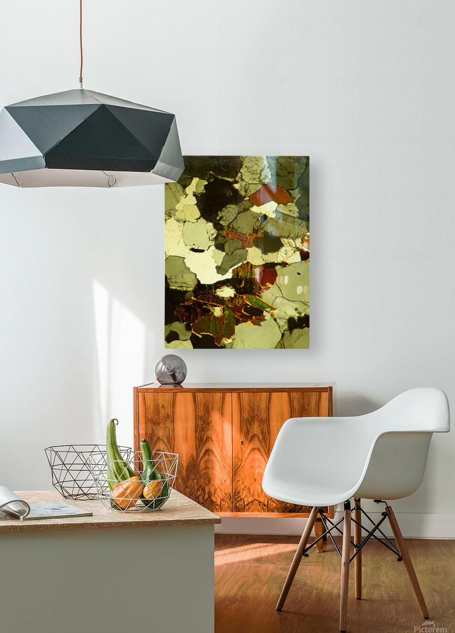 Forest Primeval  HD Metal print with Floating Frame on Back
