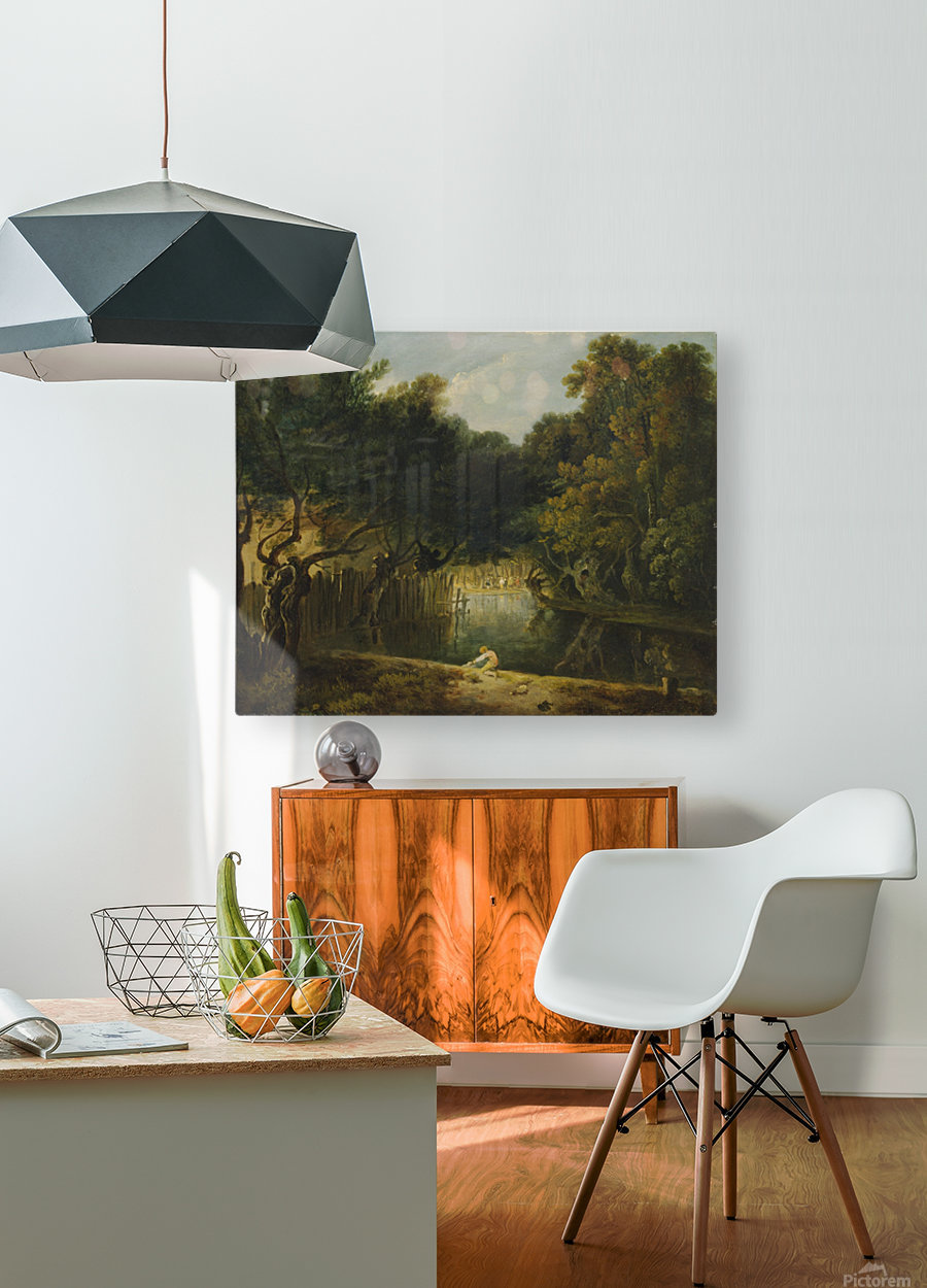 View of the Wilderness in St. James's Park  HD Metal print with Floating Frame on Back