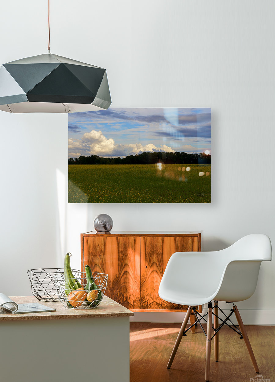 Champ ensoleille- Sunny field  HD Metal print with Floating Frame on Back