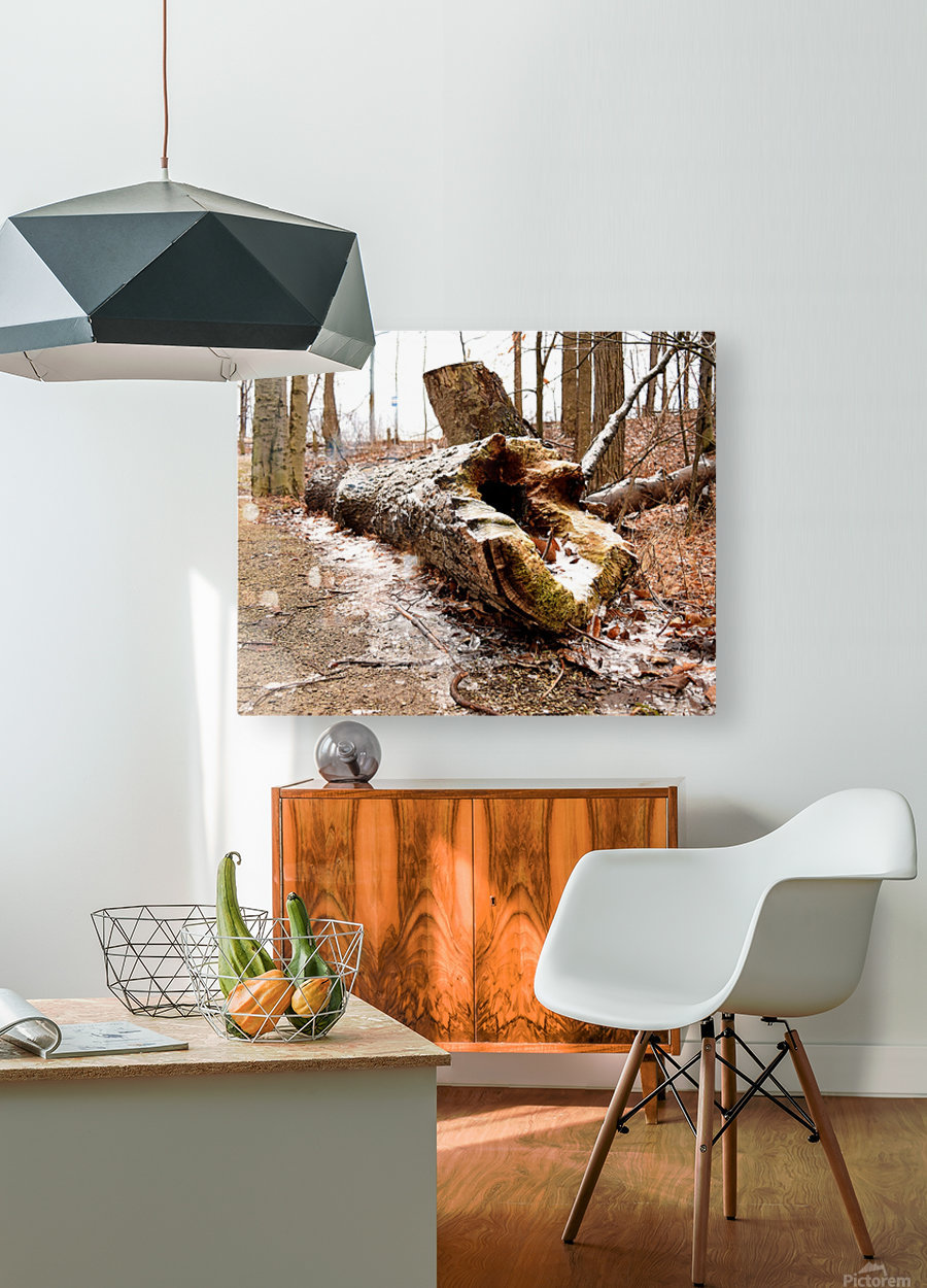 Log  HD Metal print with Floating Frame on Back