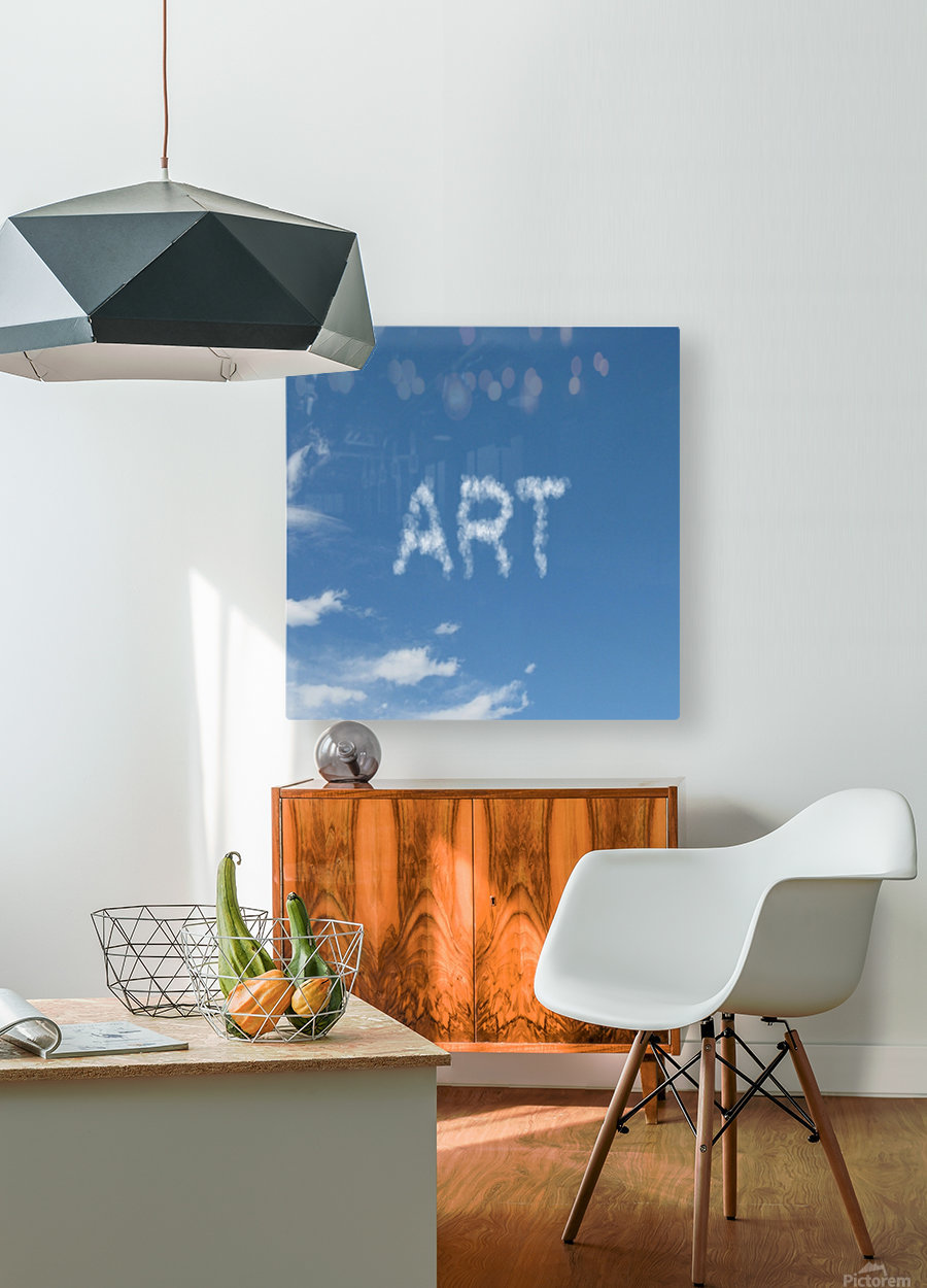 Artist Sky  HD Metal print with Floating Frame on Back