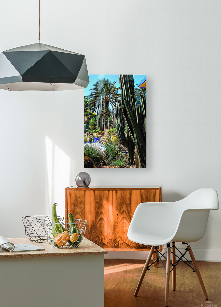Giant Cacti Jardin Majorelle Marrakech  HD Metal print with Floating Frame on Back