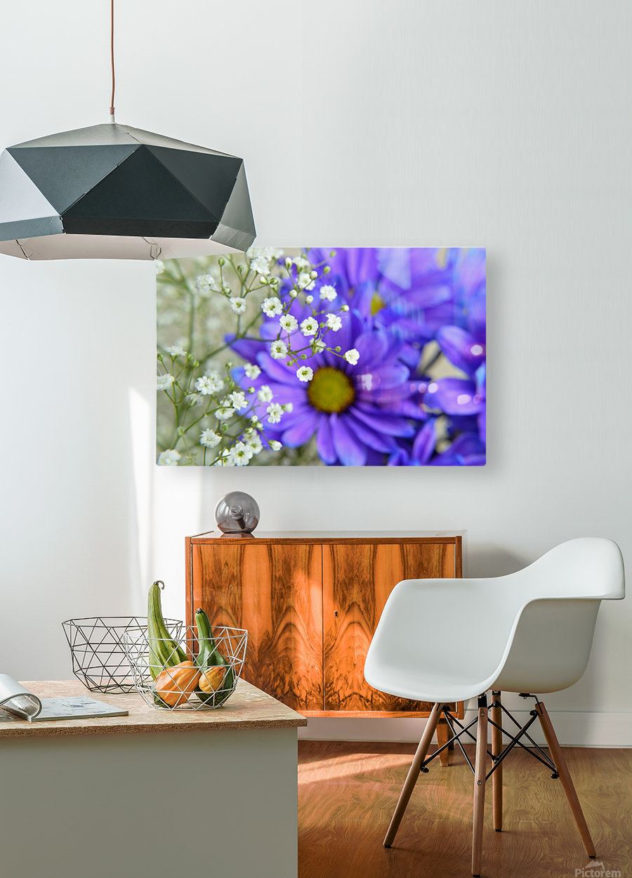 Babys Breath on Blue Daisy  HD Metal print with Floating Frame on Back