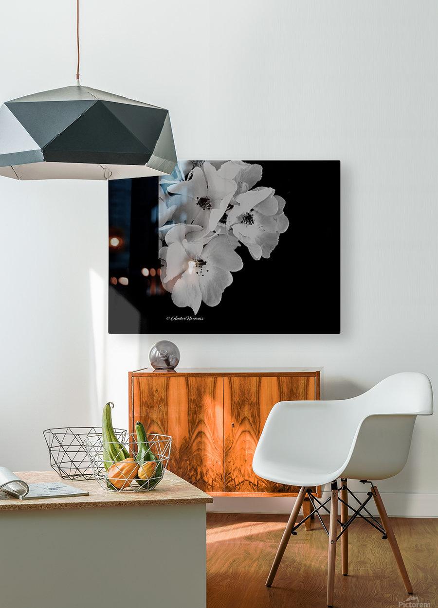 Prose  HD Metal print with Floating Frame on Back