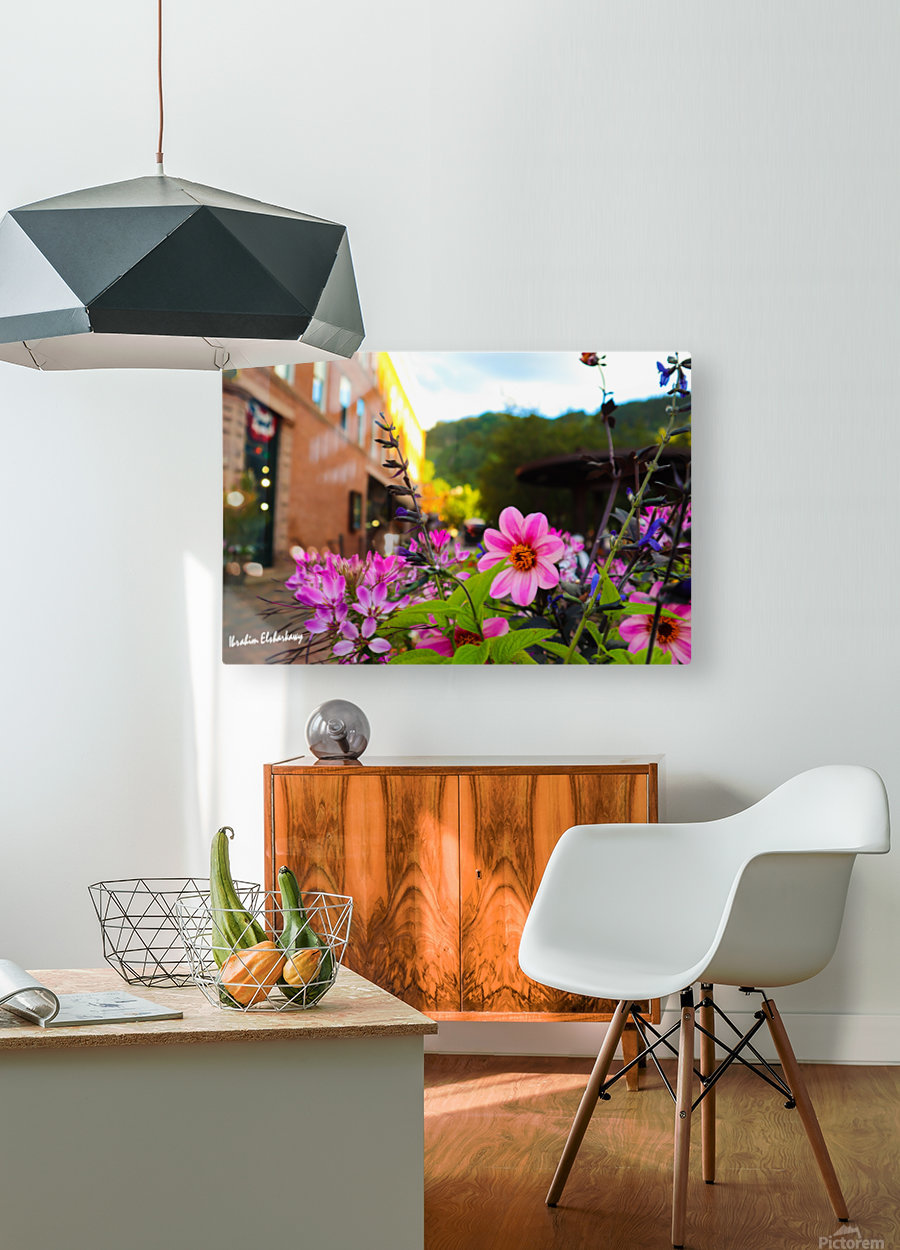 Beautiful pink and purple flowers in European city  HD Metal print with Floating Frame on Back