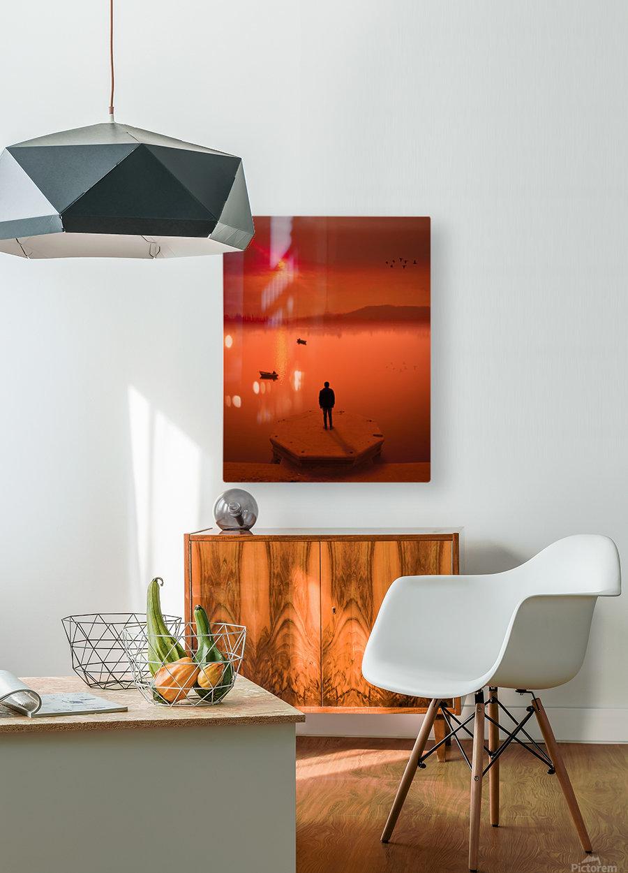 _DSC9772 Edit  HD Metal print with Floating Frame on Back