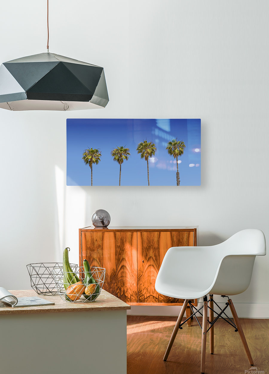 Lovely Palm Trees   Panorama  HD Metal print with Floating Frame on Back