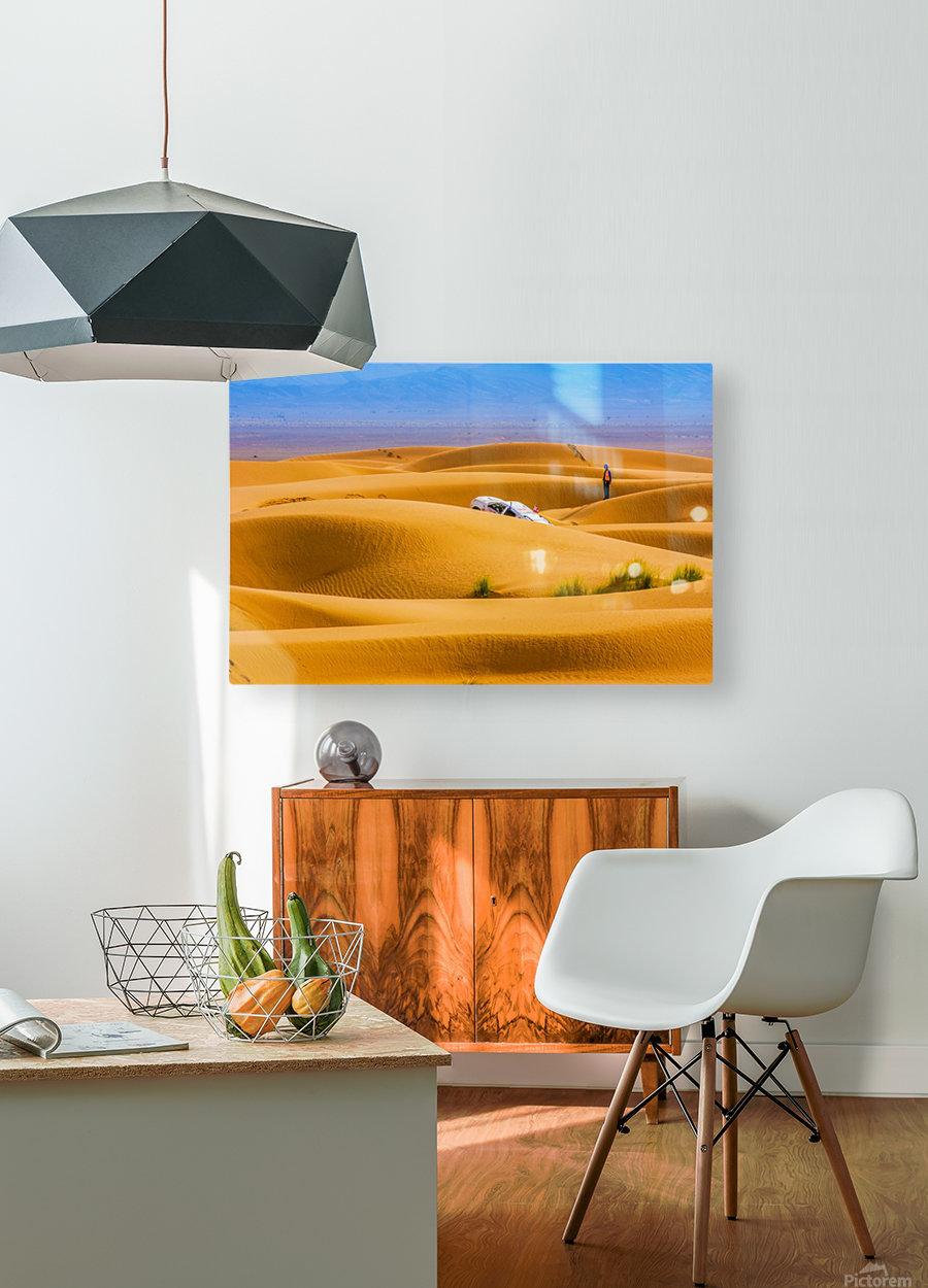 Mal prises  HD Metal print with Floating Frame on Back