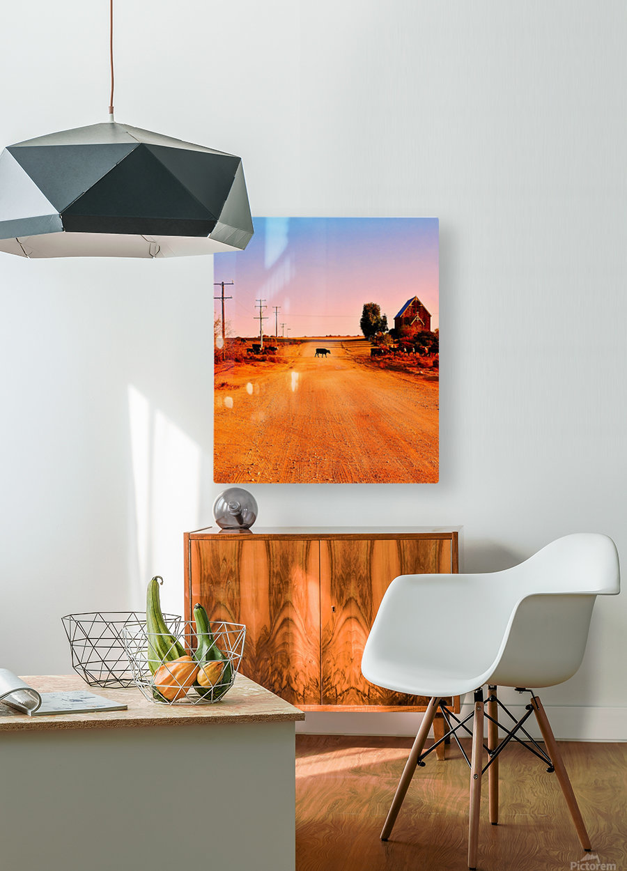 Quirky Sights of the Outback 1  HD Metal print with Floating Frame on Back