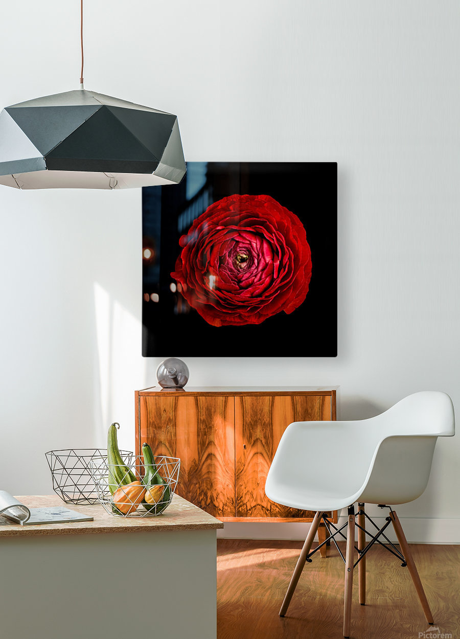 Anemone_2  HD Metal print with Floating Frame on Back