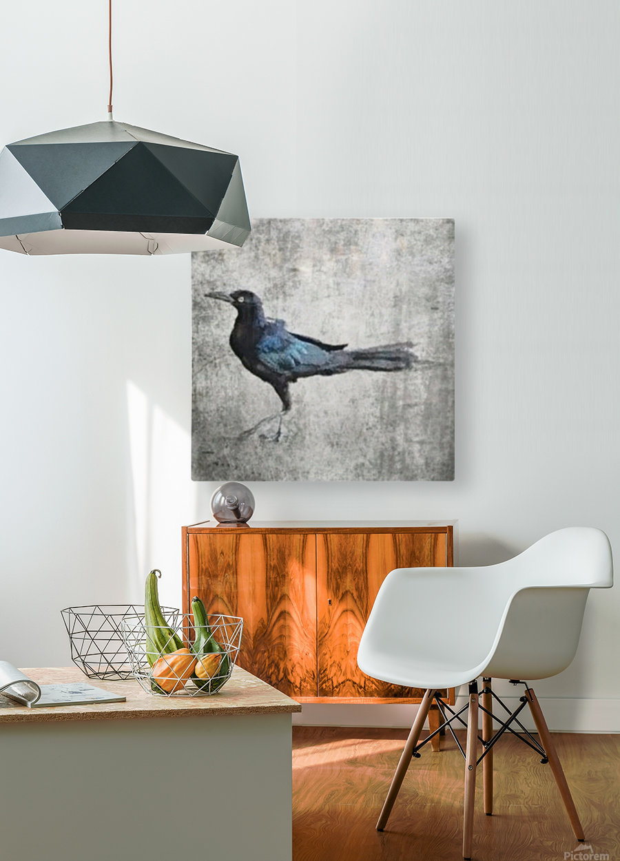 The Crow  HD Metal print with Floating Frame on Back