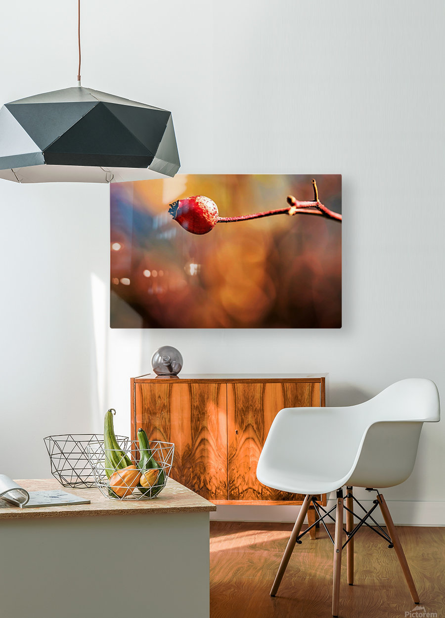 Red bud  HD Metal print with Floating Frame on Back