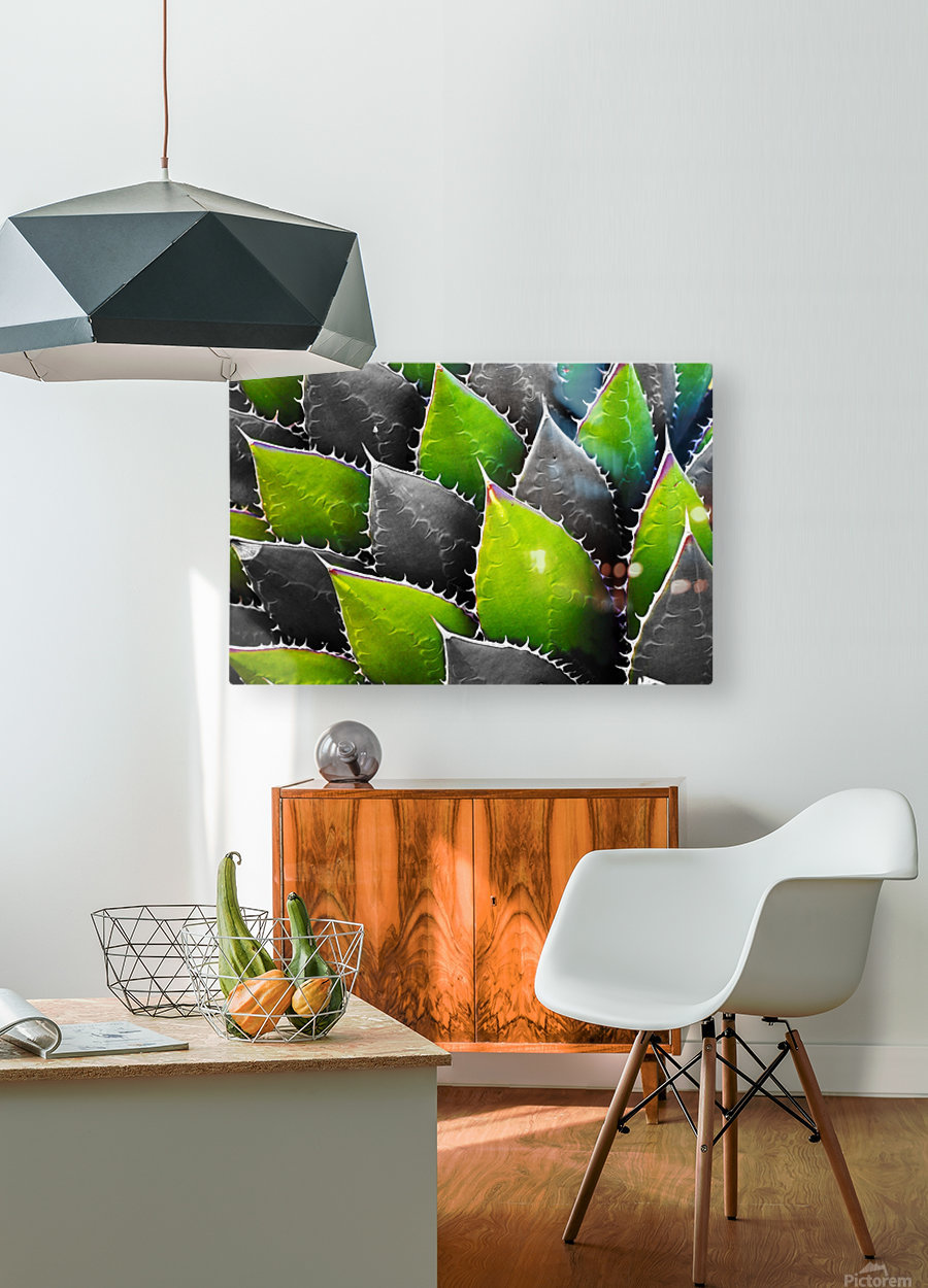 Thorny  HD Metal print with Floating Frame on Back