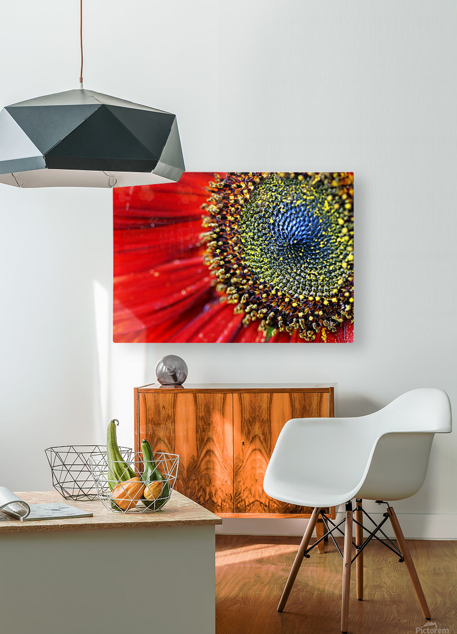 Spiral Center Of Sunflower  HD Metal print with Floating Frame on Back