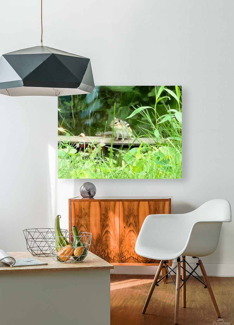 20190916_180230  HD Metal print with Floating Frame on Back