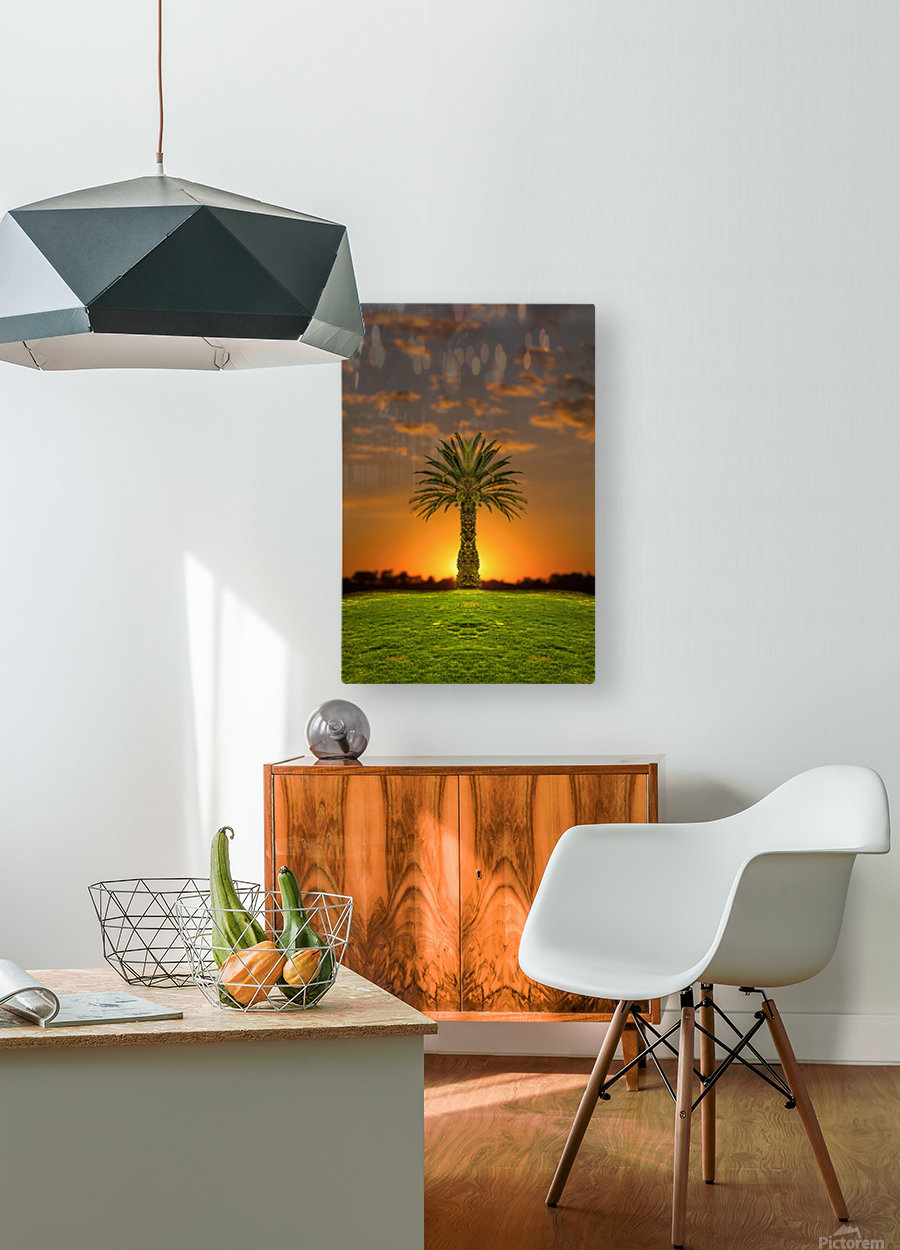 Phoenix Rising  HD Metal print with Floating Frame on Back