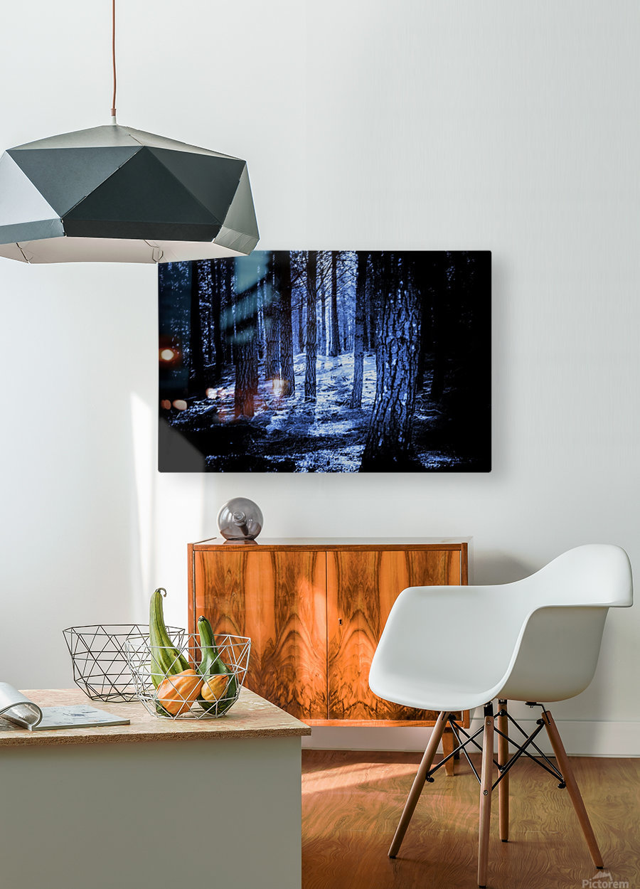 Mysterious Forest  HD Metal print with Floating Frame on Back