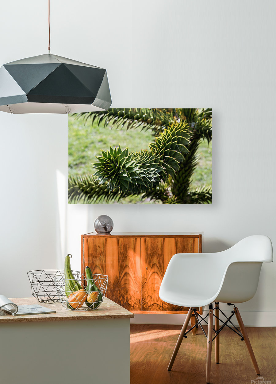 Plant Image  HD Metal print with Floating Frame on Back