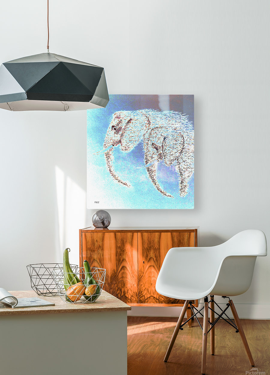 2 Elephants  HD Metal print with Floating Frame on Back