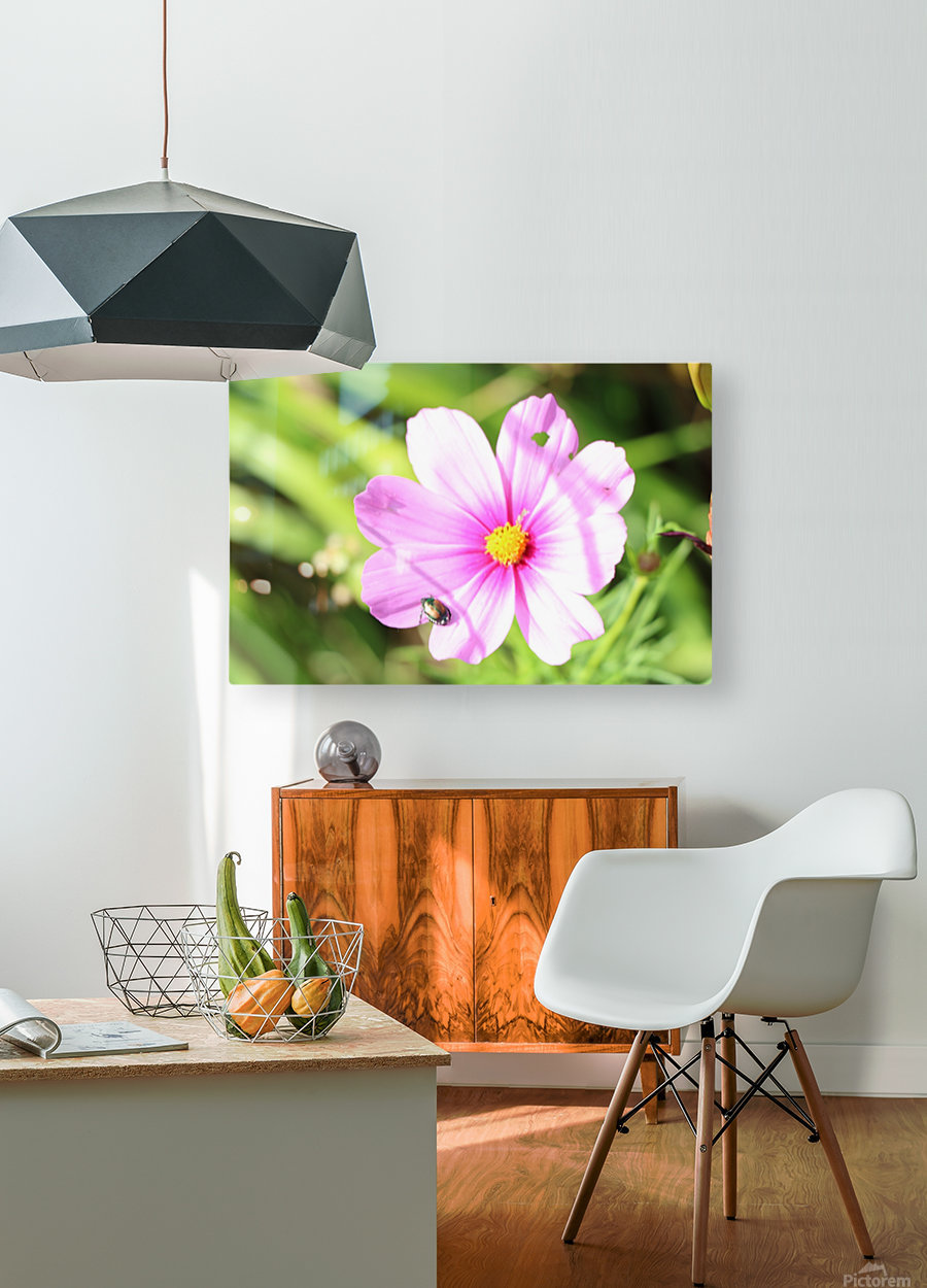 Flower Bug  HD Metal print with Floating Frame on Back