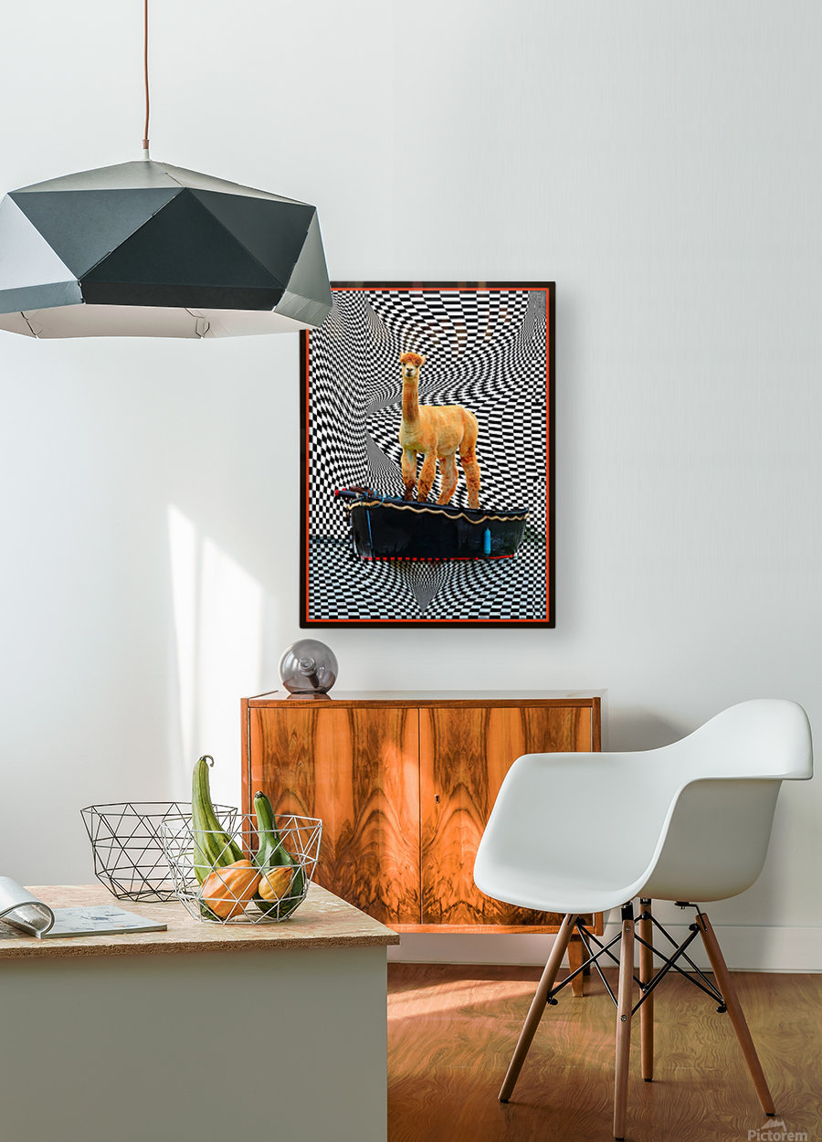 alpaca on a boat ride  HD Metal print with Floating Frame on Back