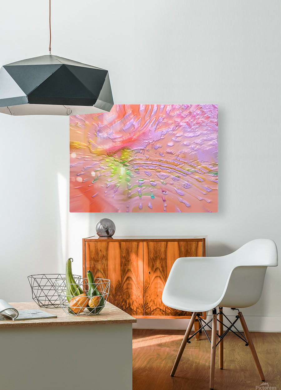 39  HD Metal print with Floating Frame on Back