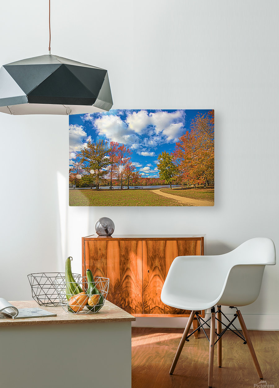 CK5L0849 studio  HD Metal print with Floating Frame on Back
