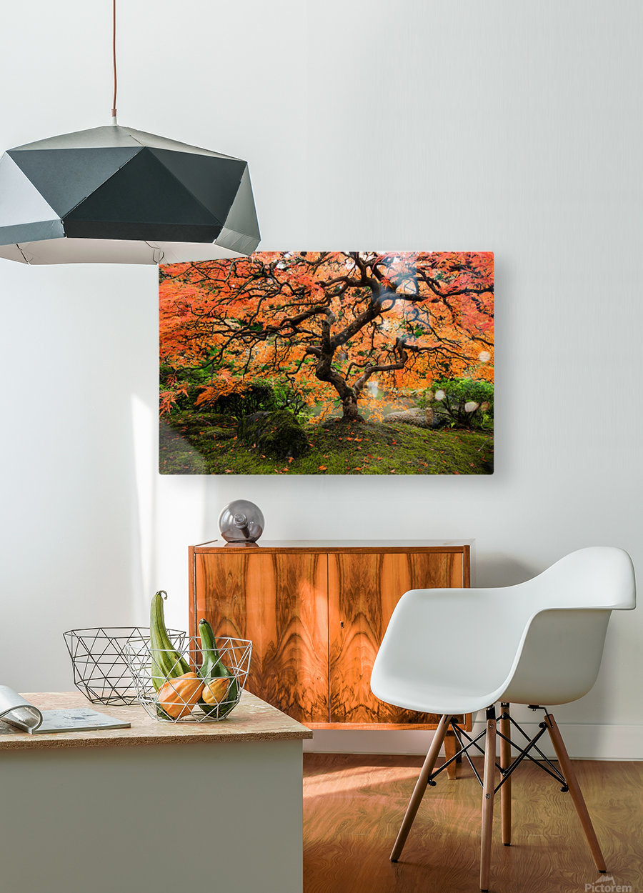 autumn bliss  HD Metal print with Floating Frame on Back