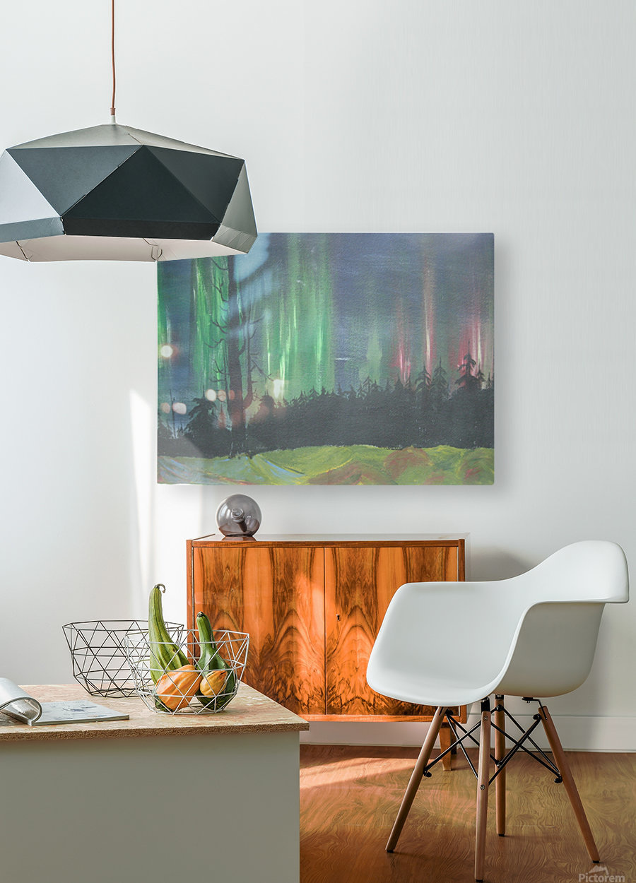 Aurora Borealis  HD Metal print with Floating Frame on Back