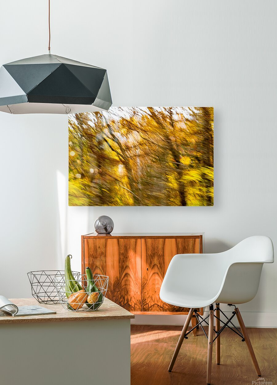 Foliage Blur  HD Metal print with Floating Frame on Back