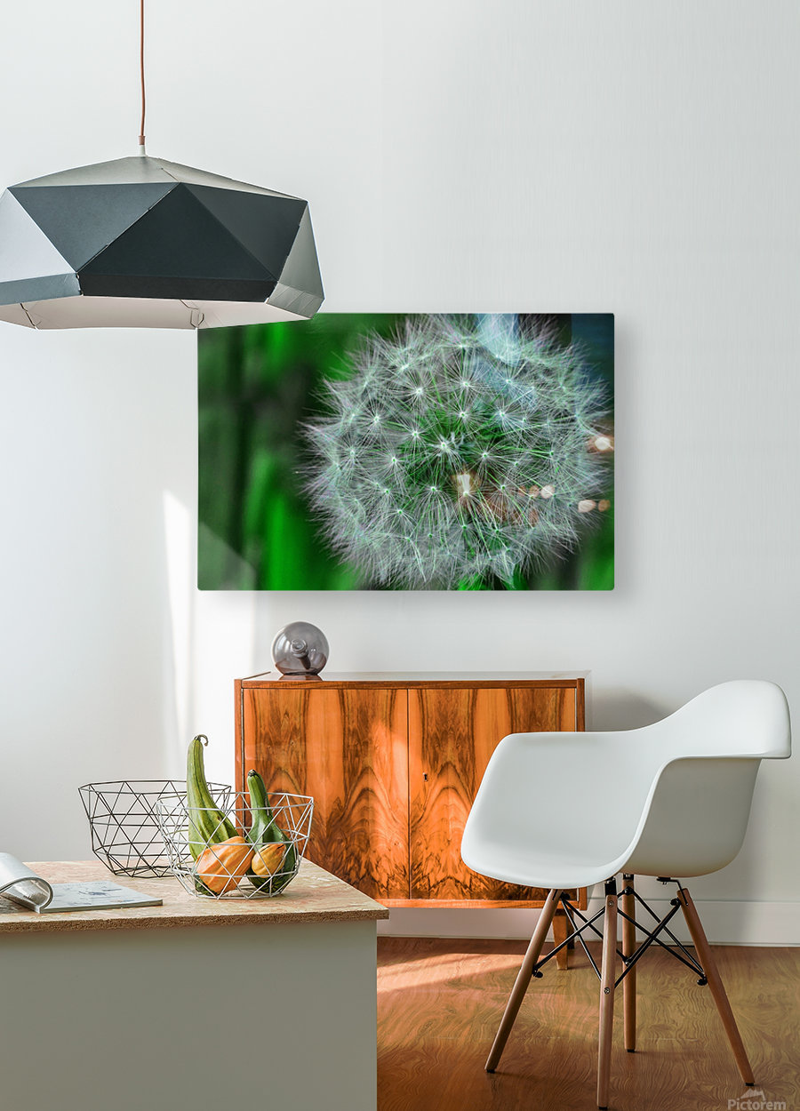 Make a wish  HD Metal print with Floating Frame on Back