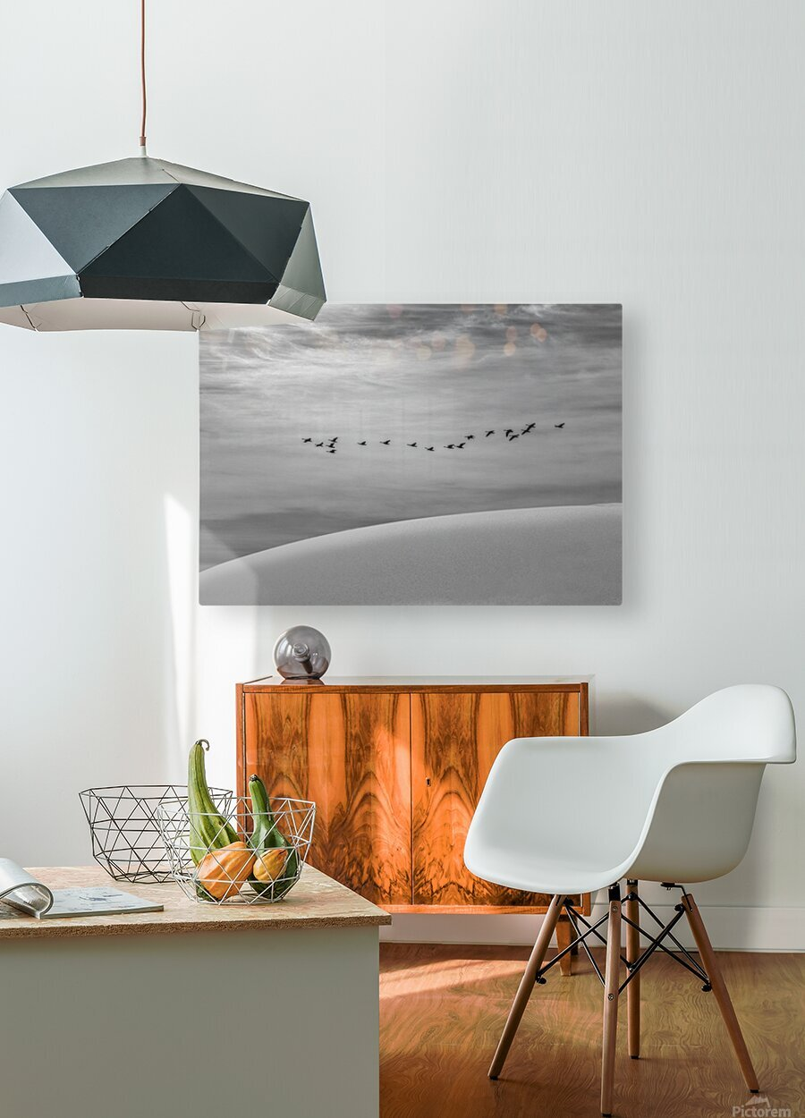 The Journey   HD Metal print with Floating Frame on Back