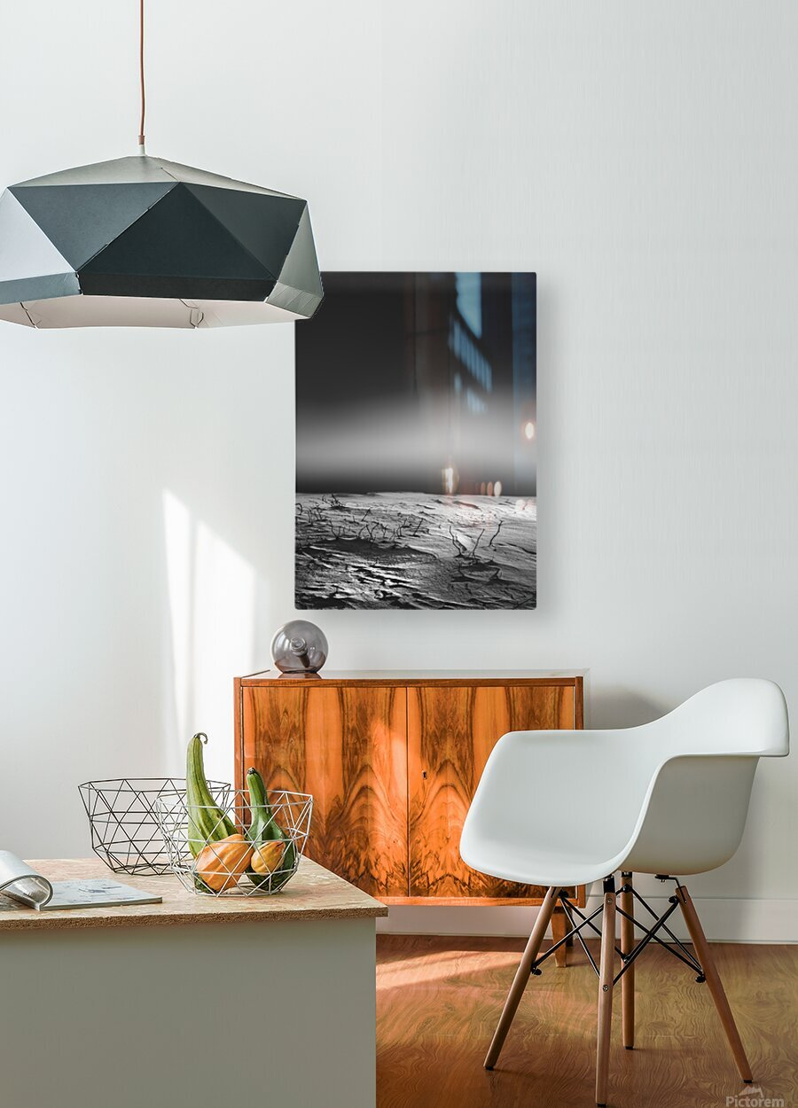 Silent Morning  HD Metal print with Floating Frame on Back