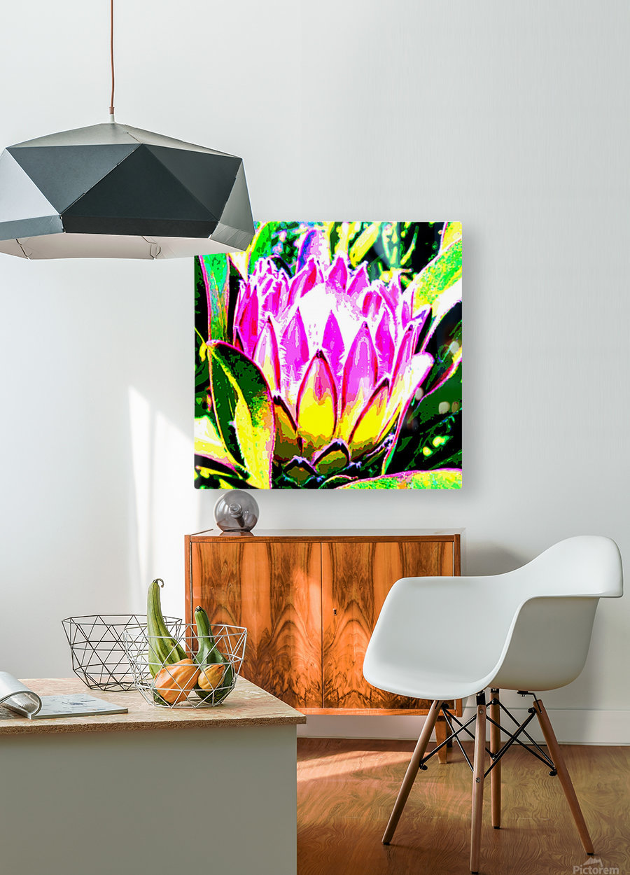pink protea  HD Metal print with Floating Frame on Back