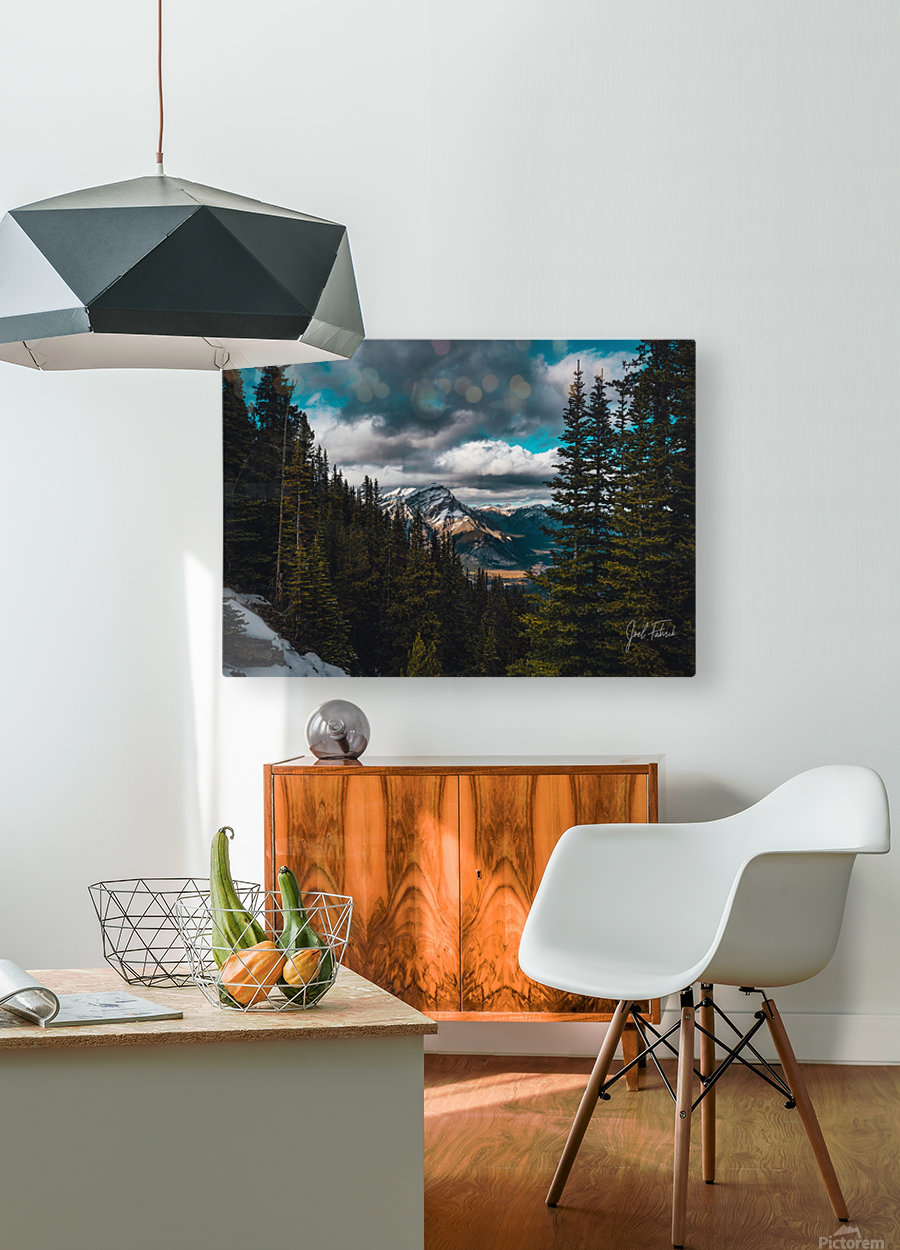 Cascade Mountain Through The Trees  HD Metal print with Floating Frame on Back